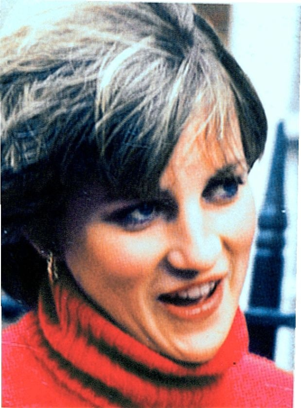 an analysis of a beloved princess diana frances spencer Diana frances spencer, princess of wales, died on august 31st, aged 36  subscribe to the economist and get the week's most relevant news and analysis print edition x  beloved satchmo next.