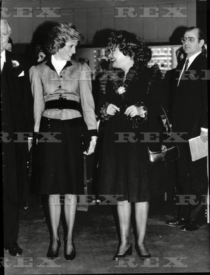 Exhibition Stand Lighting Guide : March princess diana attends a special preview of