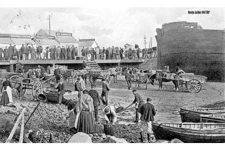 Trawl Quay, Newlyn c.1906