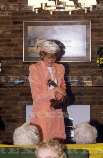 Princess Diana Visiting an Old Age Sheltered Housing Scheme, Leamington Spa, Warwickshire