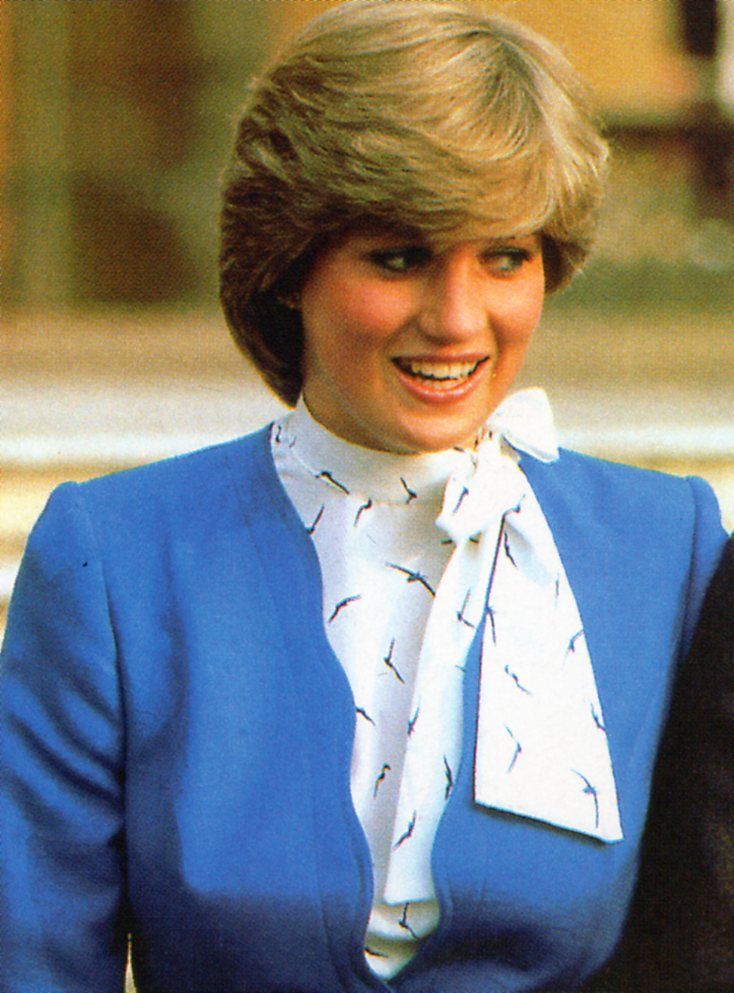 the princess is the lady When lady diana, princess of wales, died in paris 20 years ago, she had reached iconic status, even as much of her once-hidden personal life had been exposed to the world now three new documentaries are revealing previously unknown and sometimes heartbreaking details of her life with prince.